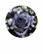 Flor14